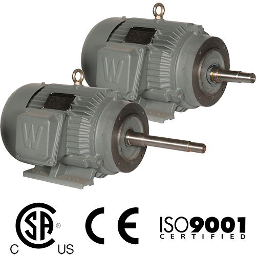 WorldWide Electric Close Coupled Pump Motors
