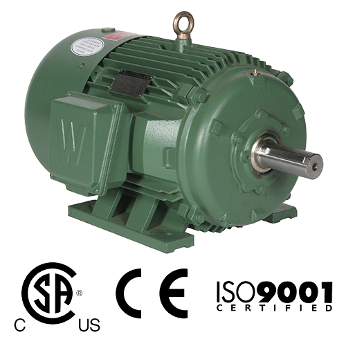 WorldWide Electric General Purpose Motor with Rigid Base